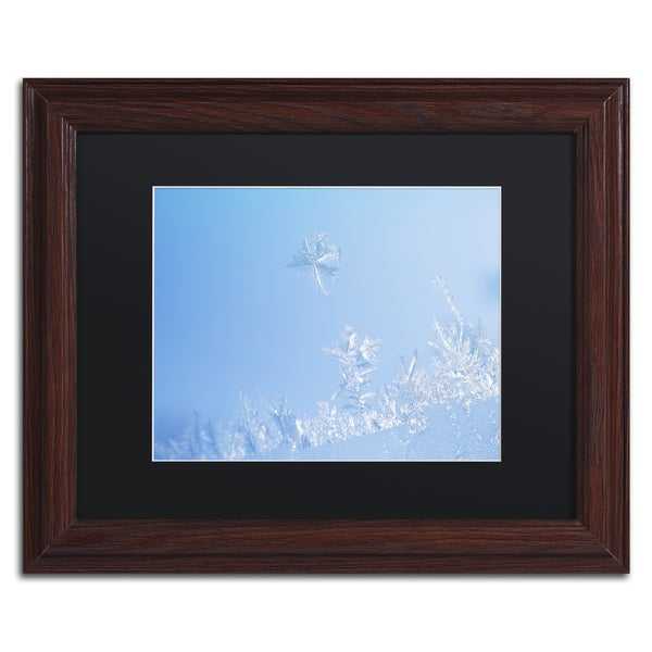 Kurt Shaffer 'Window Frost' Black Matte, Wood Framed Wall Art
