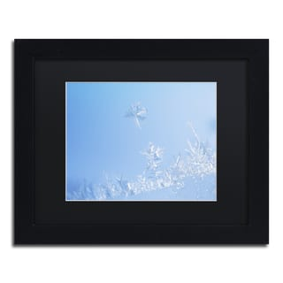 Kurt Shaffer 'Window Frost' Black Matte, Black Framed Wall Art
