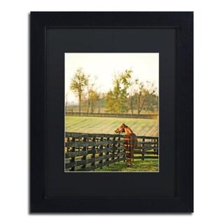 Preston 'Kentucky Horse Sunrise' Black Matte, Wood Framed Wall Art