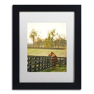 Preston 'Kentucky Horse Sunrise' White Matte, Black Framed Wall Art