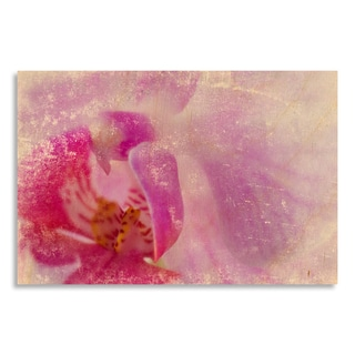 Gallery Direct Sia Aryai 'Orchid II'