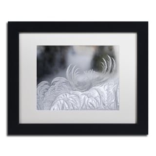 Kurt Shaffer 'February Window Frost' White Matte, Black Framed Wall Art