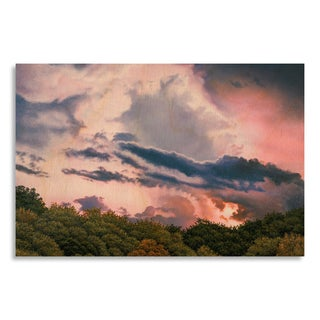 Gallery Direct Jon Eric Narum 'Rose Sunset' Birchwood