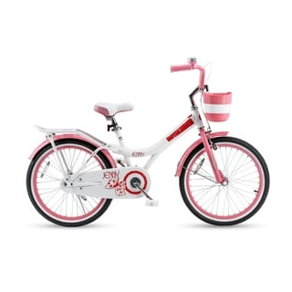 Royalbaby Jenny Princess Pink Girl's Bike with Basket and 20-inch Wheels