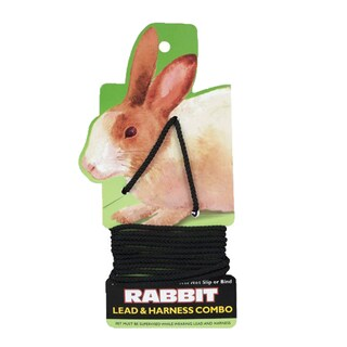 Coastal Pet Rabbit Harness and Leash Combo
