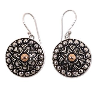 Handcrafted Sterling Silver 'Shields' Earrings (Indonesia)