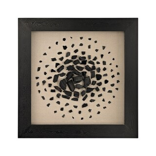 Dimond Home Black And White Carbon Framed Wall Art