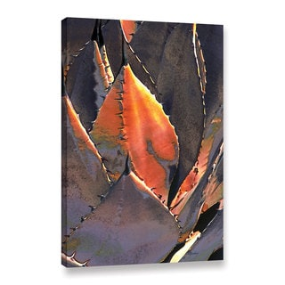 ArtWall Linda Parker 'Agave Sunset' Gallery-wrapped Canvas