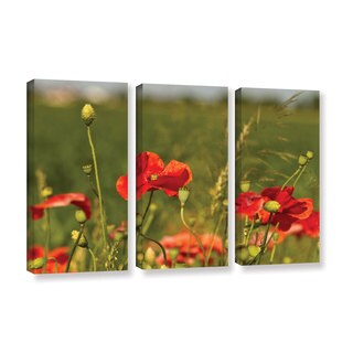 ArtWall Lindsey Janich 'Red Flower 1' 3 Piece Gallery-wrapped Canvas Set