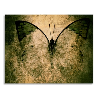 Gallery Direct butterfly' Printed on Birchwood Wall Art