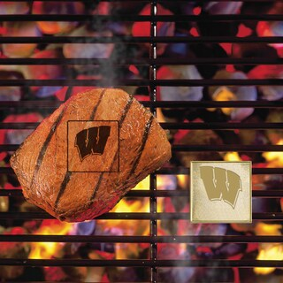 Fanmats Wisconsin Badgers Silver Metal Fan Brand