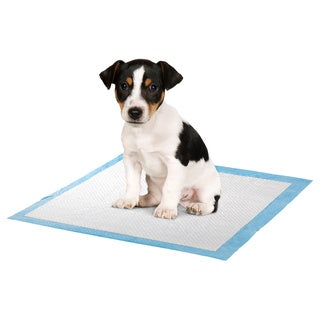 Puppy Training Pads (Pack of 100)