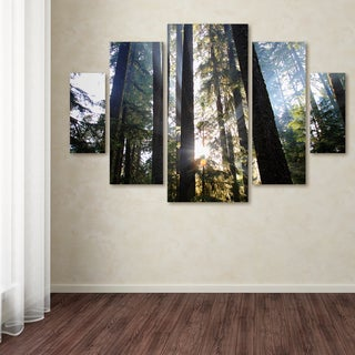 Pierre Leclerc 'Sunrays' Canvas Wall Art