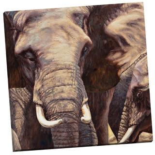 Portfolio Canvas Decor Sokol-Hohne Elephant Approach 24x24 Wrapped/Stretched Canvas Wall Art