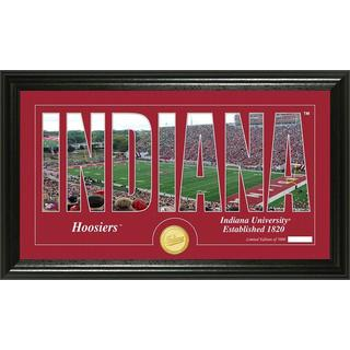 "Indiana University ""Silhouette"" Bronze Coin Panoramic Photo Mint"