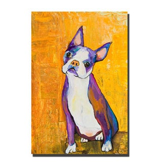 Pat Saunders-White 'Cosmo' Canvas Wall Art