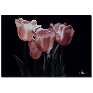 Martha Guerra 'Pink Blooms II' Canvas Wall Art