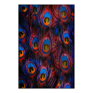 Gallery Direct 'Colorful peacock feathers background' Mounted Metal