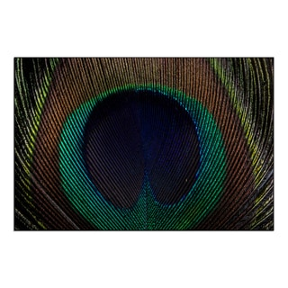 Gallery Direct New Era Photography 'Peacock Feather' Mounted Metal