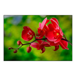 Gallery Direct 'red orchid flower on blur background' Mounted Metal