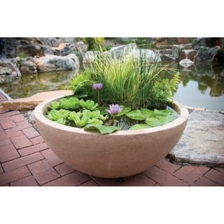 Patio Water Garden Planter|https://ak1.ostkcdn.com/images/products/10540072/P17621054.jpg?impolicy=medium