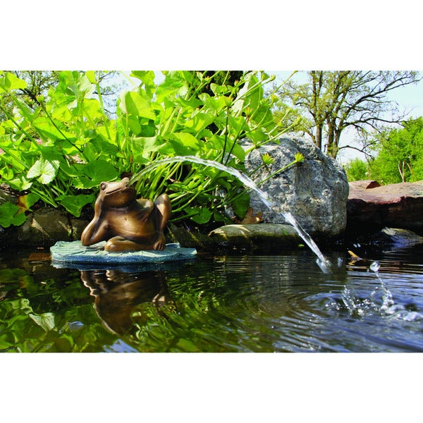 Shop lazy frog on lily pad spitter fountain free for Pond stuff for sale