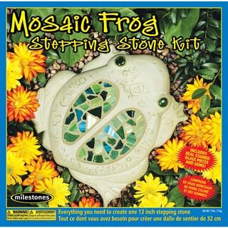 Mosaic Stepping Stone KitFrog