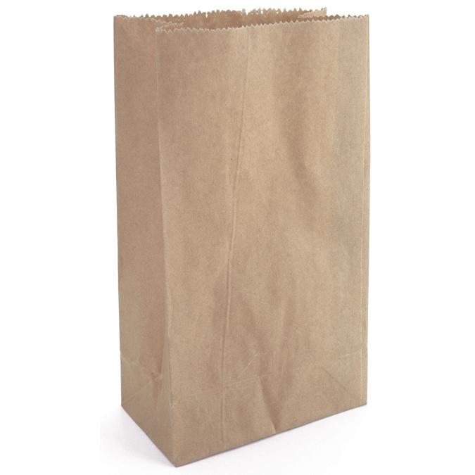DARICE Paper Bags 4.625inX8.5in 40/PkgKraft (Kraft)