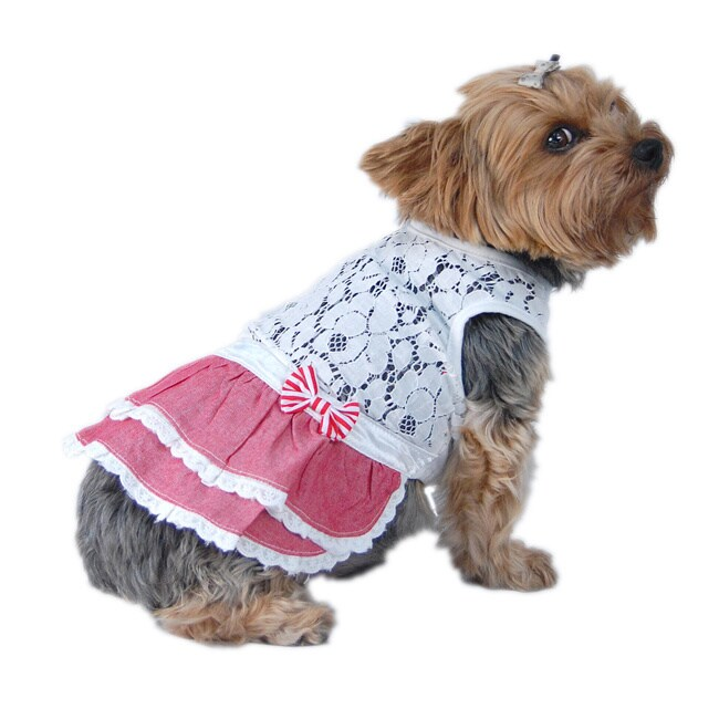 ANIMA Red and White Lace Top Dog and Pet Dress (Large), S...