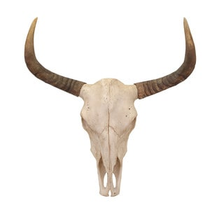 Carbon Loft Floyd Bull Skull Wall Decor