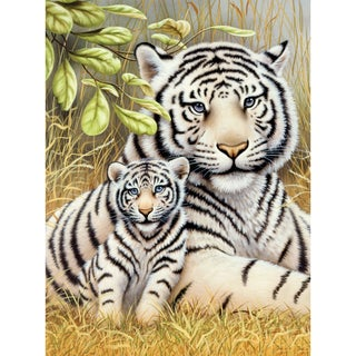 Junior Small Paint By Number Kit 8.75inX11.75inWhite Tiger Pair