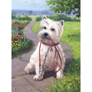 Junior Small Paint By Number Kit 8.75inX11.75inTime For A Walk