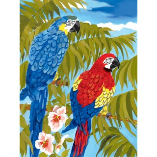 Junior Small Paint By Number Kit 8.75inX11.75inParrots