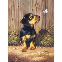 Junior Small Paint By Number Kit 8.75inX11.75inDachshund Puppy