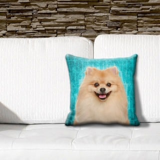 Pomeranian Grunge 16-inch Throw Pillow