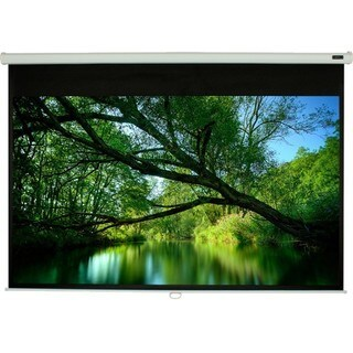 "EluneVision Triton Manual Projection Screen - 100"" - 4:3 - Ceiling Mo"