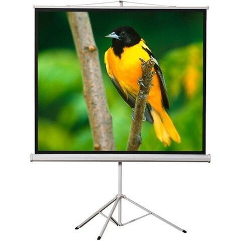 """EluneVision Tripod Projection Screen - 100"""" - 4:3 - Surface Mount"""