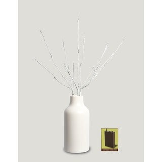 Apothecary & Company Decorative LED Aspen Branch Light