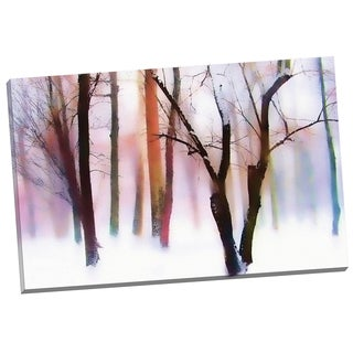 Portfolio Canvas Decor 'Winter Wonderland' by Jessica Jenney Gallery Wrapped Canvas