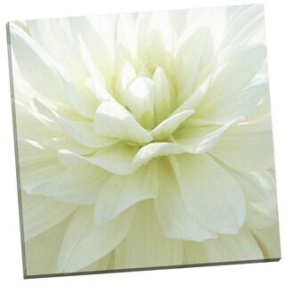 Portfolio Canvas Decor 'White Blossom I' by Mary Campanga Gallery Wrapped Canvas