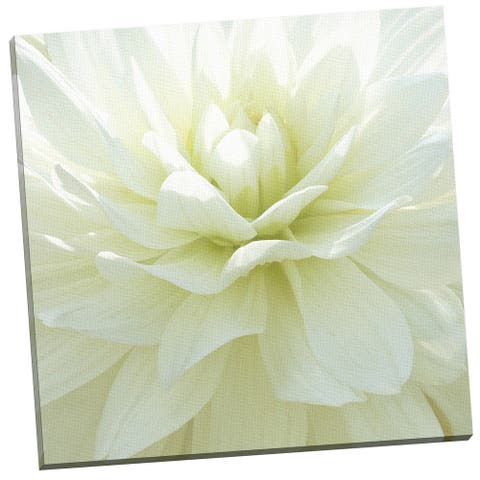 Portfolio Canvas Decor 'White Blossom I' by Mary Campanga Gallery Wrapped Canvas