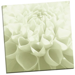 Portfolio Canvas Decor 'White Blossom IV' by Mary Campanga Gallery Wrapped Canvas