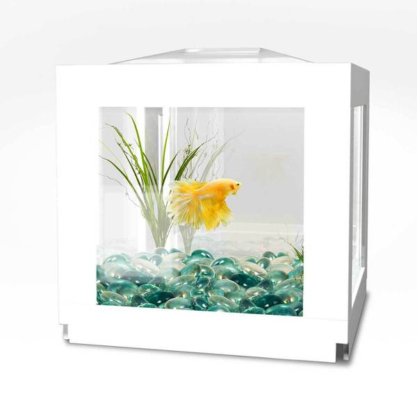 Biobubble deco cube habitat free shipping on orders over for Cube miroir habitat