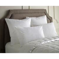 Luxury Down Compartment Sleep Pillow (Set of 2)