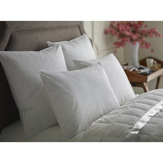 White Feather and Down Sleep Pillow (Set of 2)