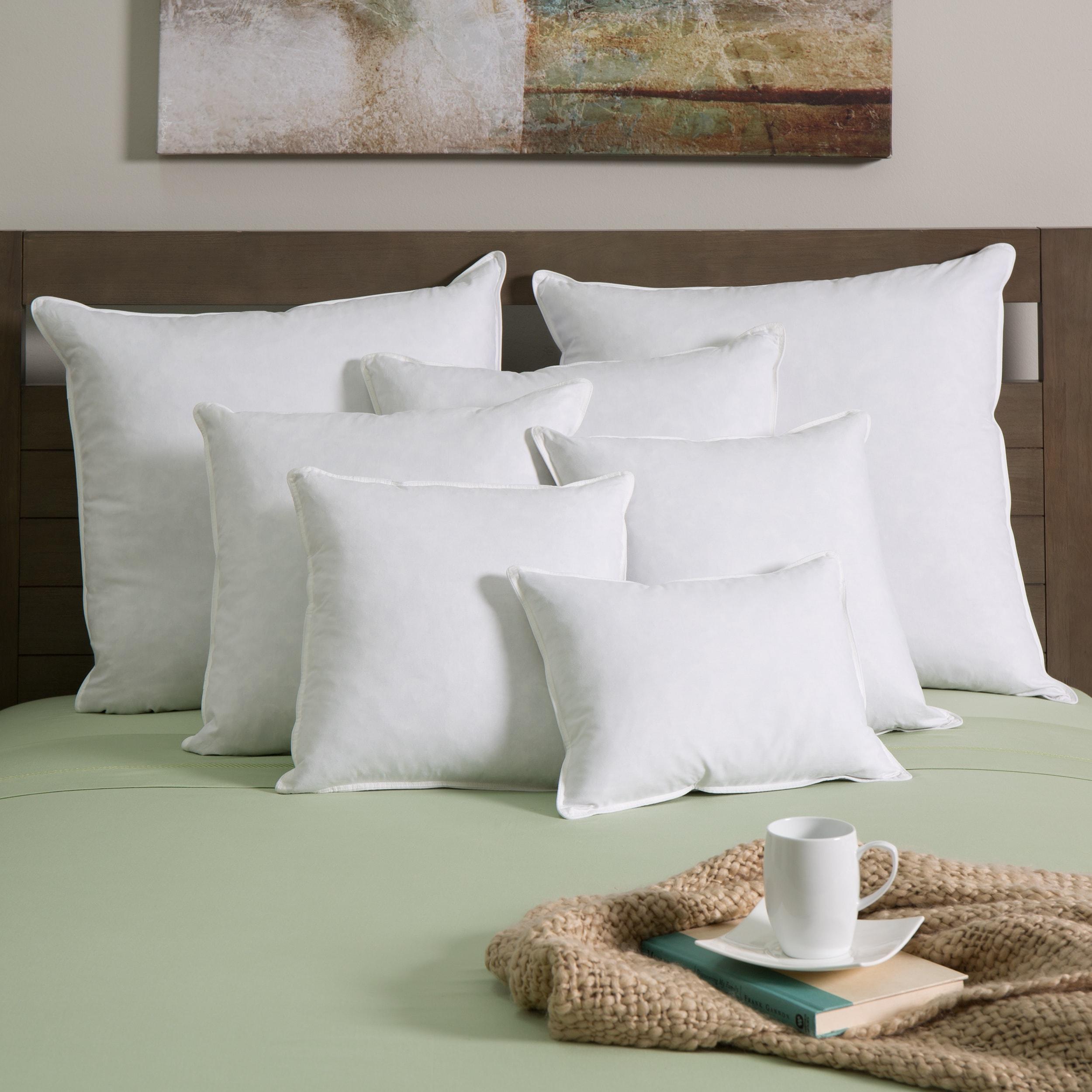 European Heritage White Goose Down And Feather Decor Pillow Insert Set Of 2
