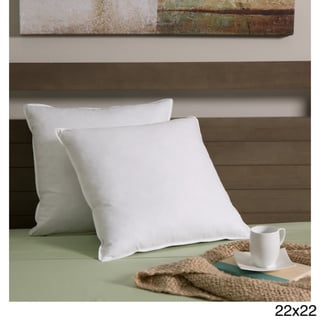European Heritage Feather and White Goose Down Decor Pillow Insert (Set of 2)