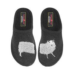 Haflinger Sheep Black