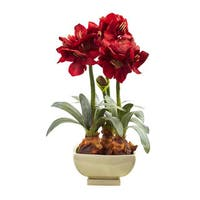 Amarylis Arrangement w/Vase