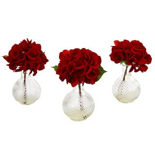 Red Hydrangea w/Glass Vase (Set of 3)